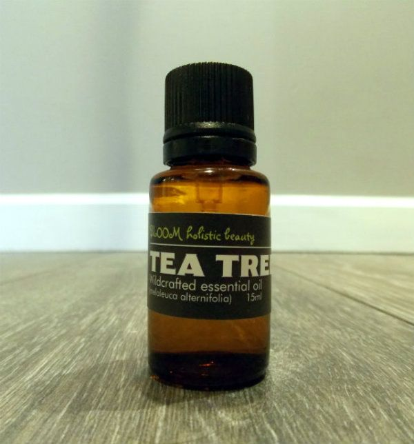 Tea Tree essential oil - from combating mold and mildew, to treating acne and boils, tea tree is a must!