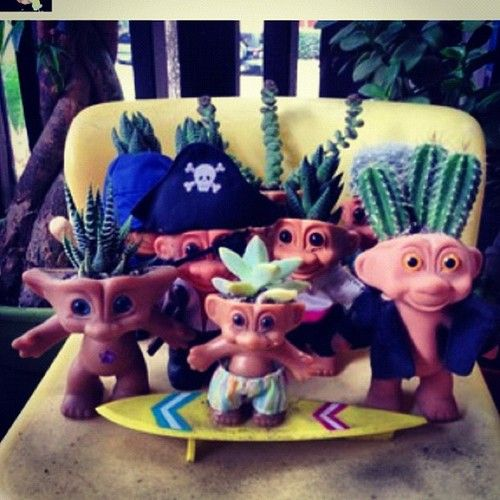 These are a hoot! Cactus Trolls