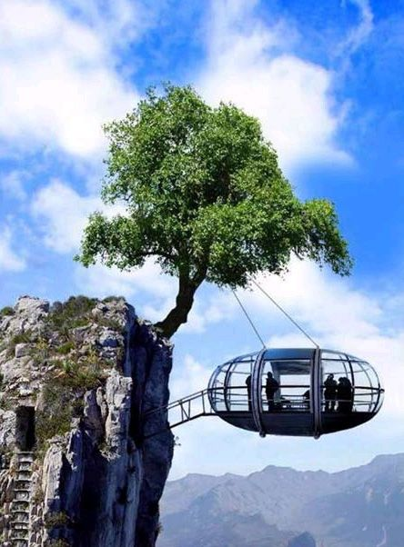 What do you think of this #unique pod of a house?: Unusual Home, London Eye, Trees Houses, The Edge, Treehouse, Strange Places, Architecture, Unusual Houses, Norway