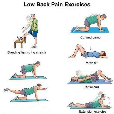 Image result for Lower Back Aches