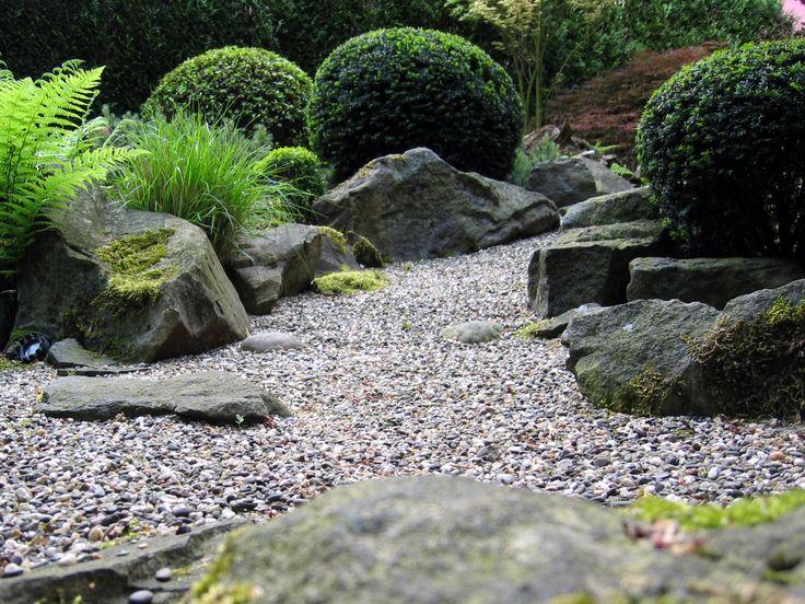 1000+ images about bepflanzung: pflanzen - felsen - splitt on, Garten und Bauen