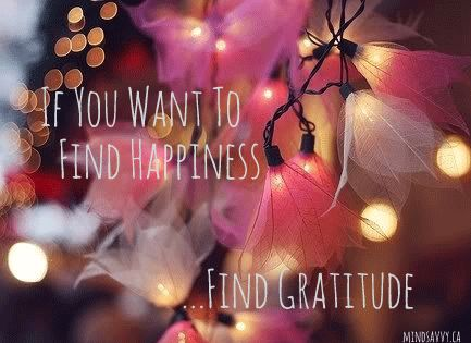 Happiness is Gratitude! And there is so much to be grateful for #Gratitude #BeMindSavvy #Happiness