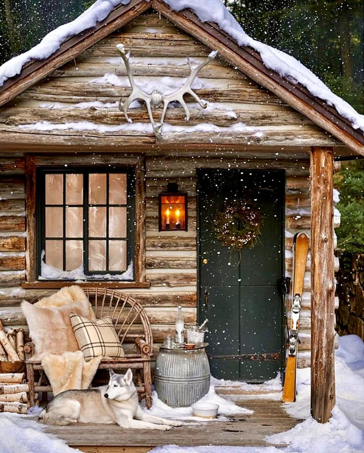 Favorite Holiday Houses