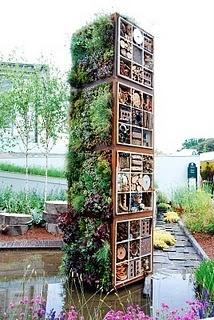 Amazing vertical succulent garden