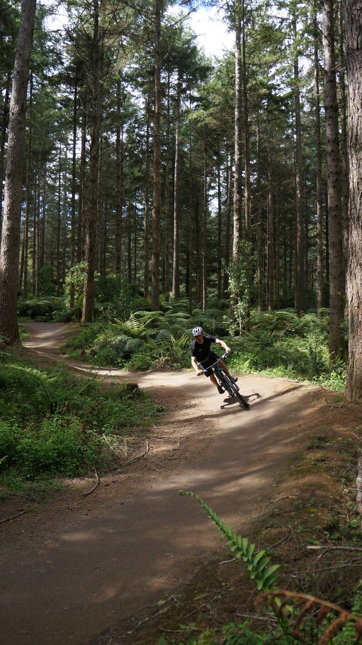 Mountain Biking in Whakarewarewa Forest.