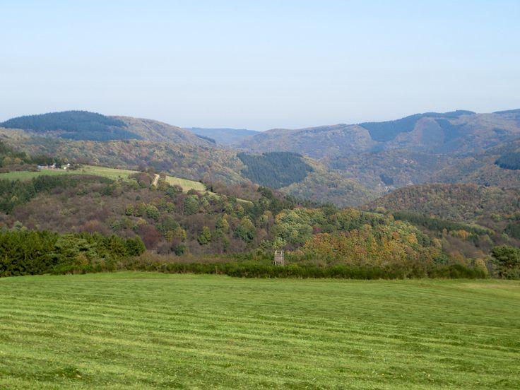 Weite, Blauer Himmel, Panorama, Hügel, Wiesen am AhrSteig blau