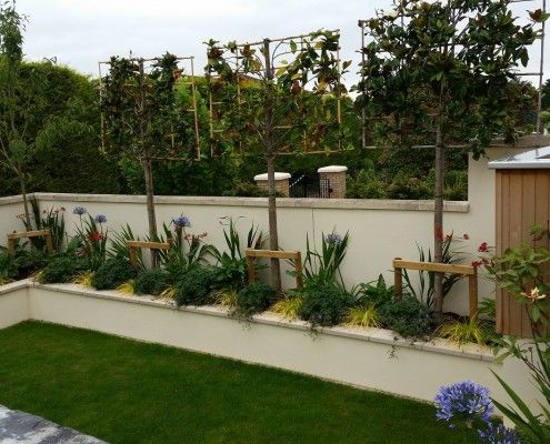 Raised planters & pleach trees to provide screening from the neighbouring garden.