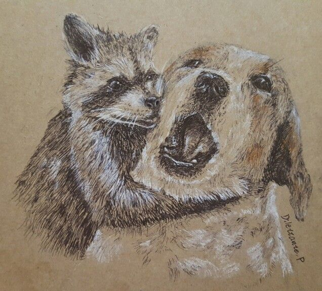 #dog #puppy #raccoon #animal #pet #draw #drawing #picture #illustration  #friendship #friend #lovely