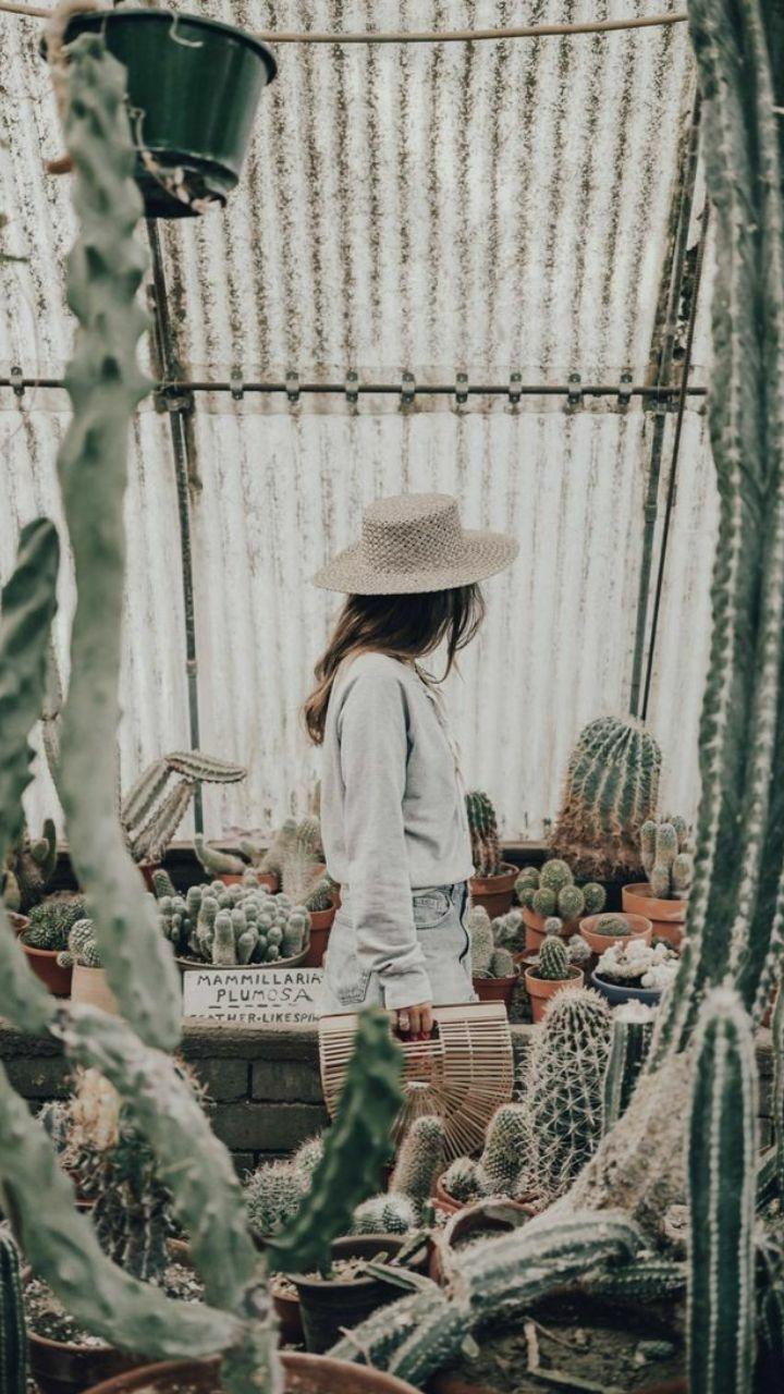 خلفيات بناتيه أجمل خلفيات موبايل للبنات 2021 جمعنا لكم في مجلة الحلوة أحدث وأجمل خلفيات للبنات 2021 في هذا ال Cool Plants Tumblr Photography Plant Photography