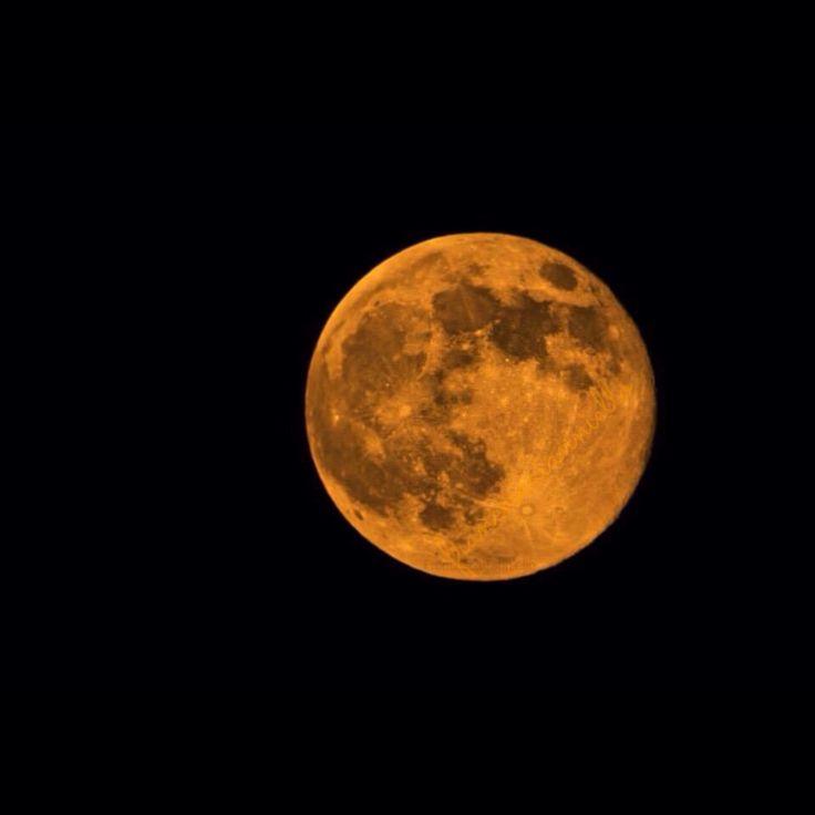 Moon.  Con il naso all'insù.