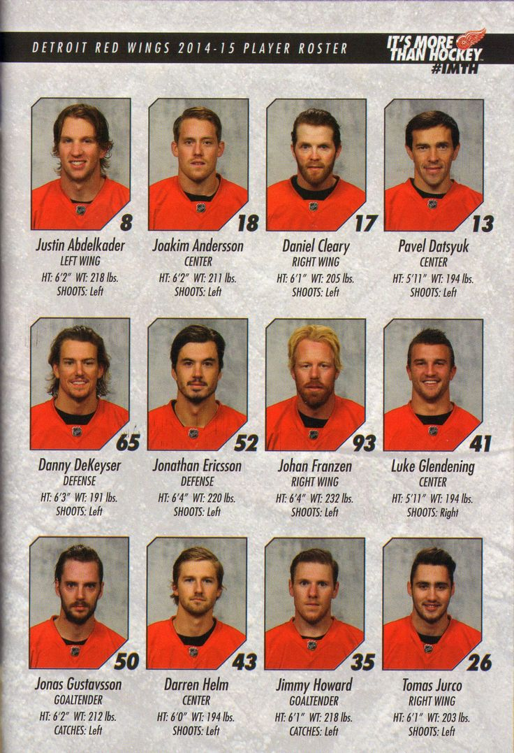 Detroit Red Wings 2014-2015 Player Roster.