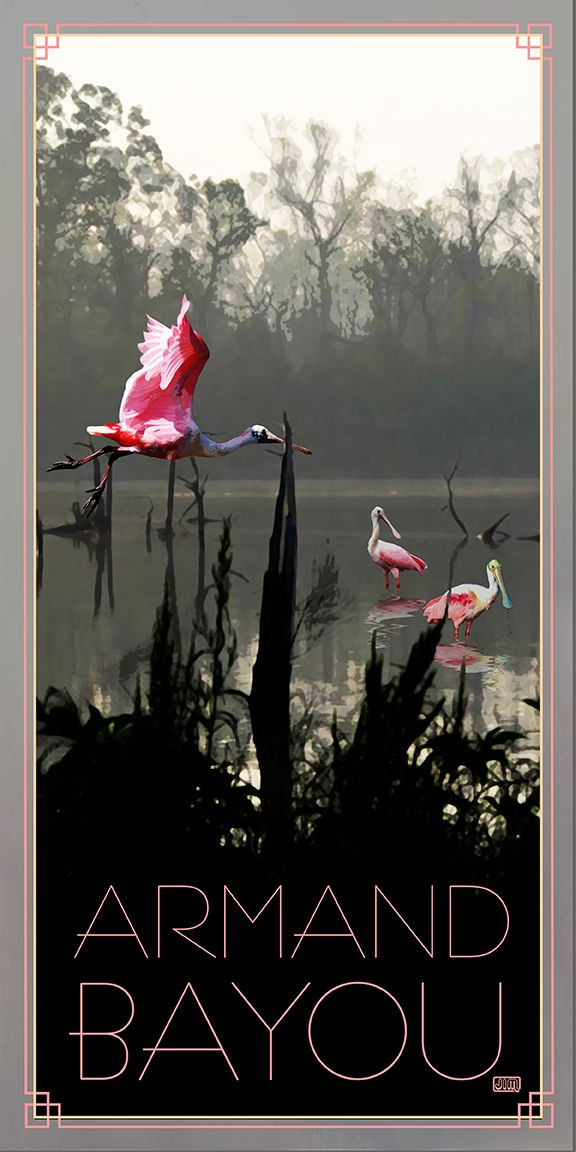 armand bayou nature center roseate spoonbill from texas posterlove going to festivals