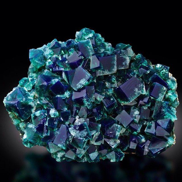 Fluorite from Rogerly Mine, England (specimen: Fine Mineral International, photography: James Elliott)