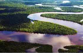 278 – (1542 - 12 de Febrero) El Amazonas. Después de una muy accidentada expedición, que ha durado más de dos años, Francisco de Orellana llega por el Amazonas al mar del Norte hoy Océano Atlántico.