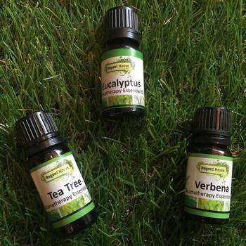 免疫力を高めてくれる作用のあるおすすめの精油はこちらです。 ・ティートゥリー ・ユーカリ ・ジンジャー ・ラベンサラ