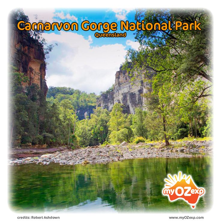 Carnarvon Gorge National Park Read more at: www.myozexp.com/single-post/2017/03/29/Carnarvon-Gorge-National-Park #australia #myozexp #backpacker #travel #Wednesday #Carnarvon NP