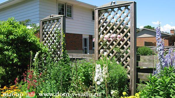 Озеленение двора частного дома. | Частный Дом