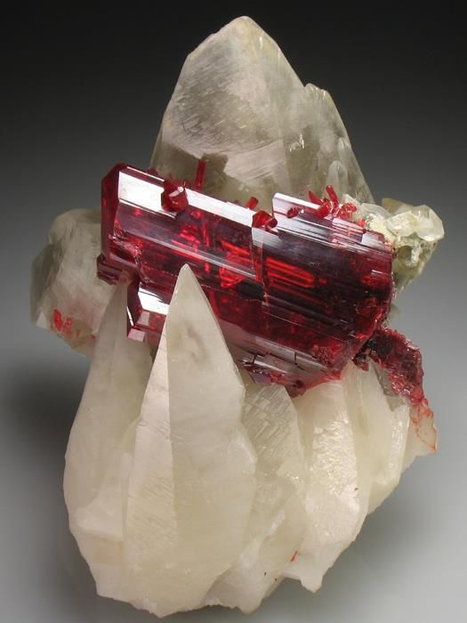 ruby red realgar crystal is clasped by translucent Calcite scalenohedrons