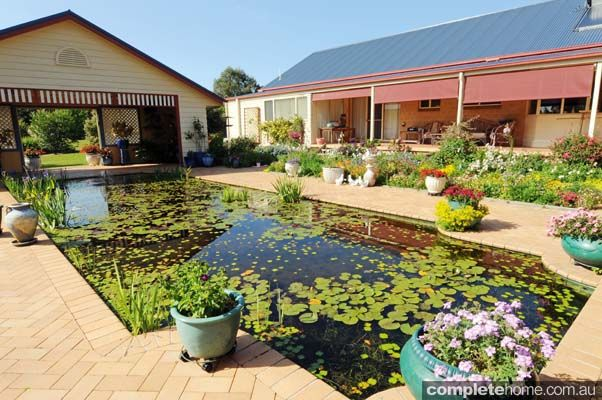 32 Best Images About Pool To Pond On Pinterest Gardens