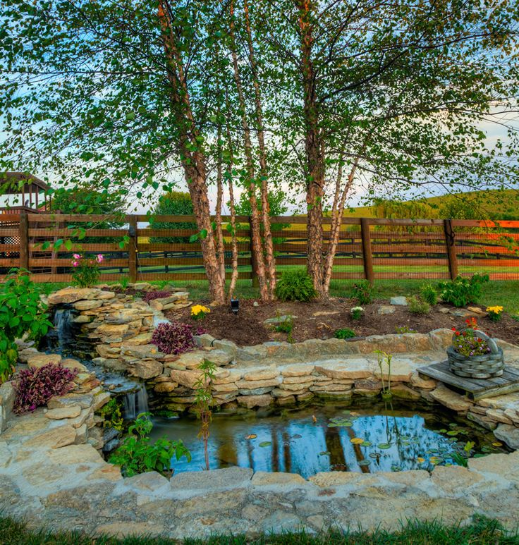 The 26 best Water Feature Ideas images on Pinterest | Backyard ponds ...