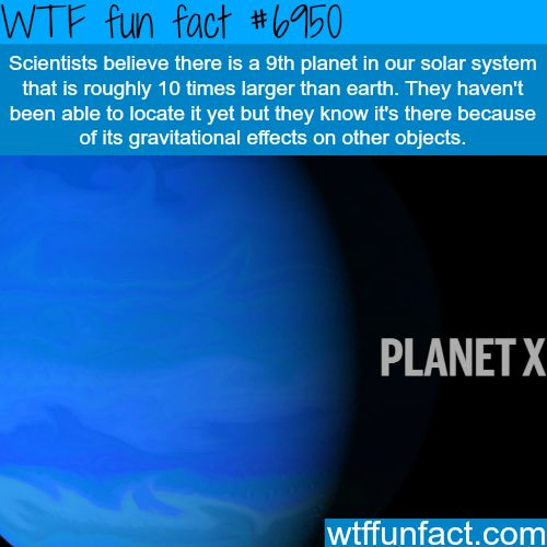 The 9th Planet - WTF fun fact  WTF is this true!? *frantically starts Googling*