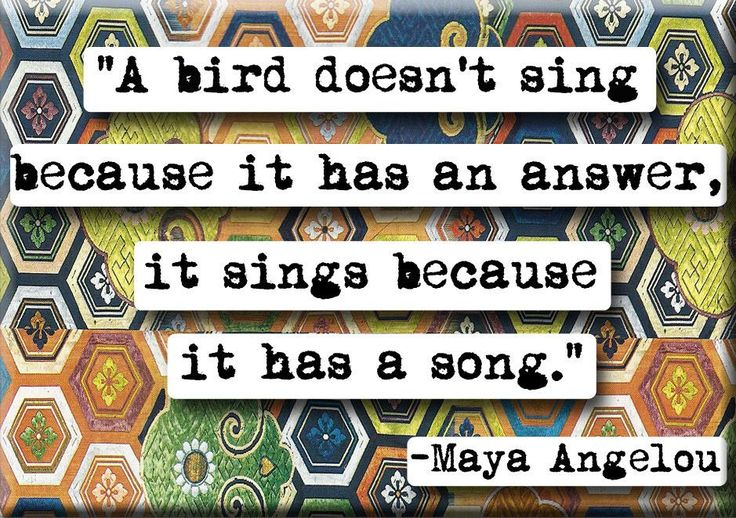 Maya Angelou Song quote Magnet or Pocket Mirror (no.127)