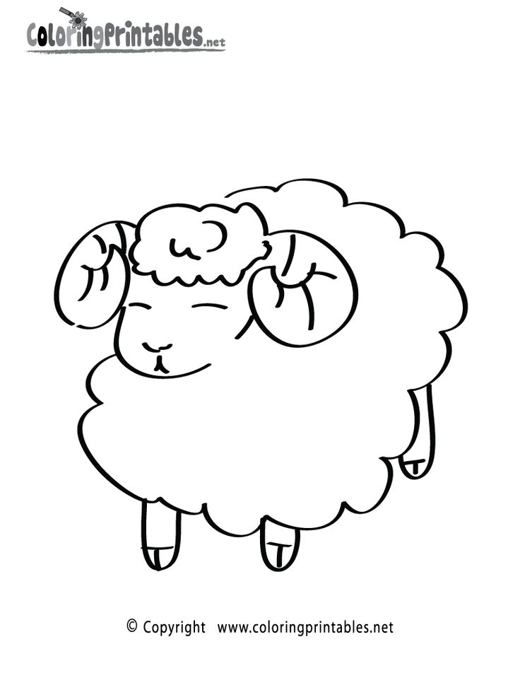 Sheep Coloring Page Printable
