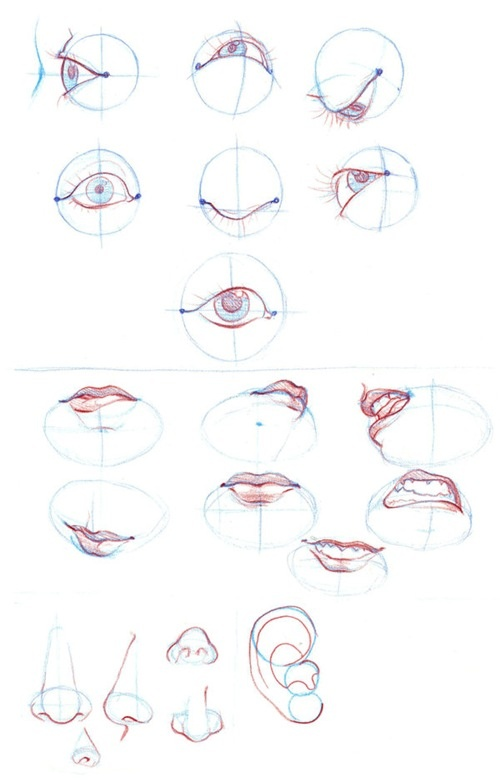 eyes repinned by www.BlickeDeeler.de ✤ || CHARACTER DESIGN REFERENCES | Find more at https://www.facebook.com/CharacterDesignReferences