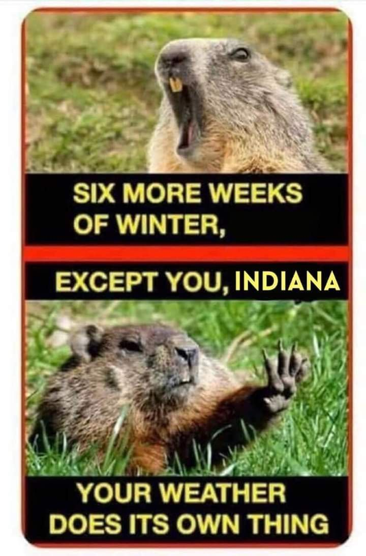 Groundhog Day In Indiana Texas Humor Texas Weather Only In Texas