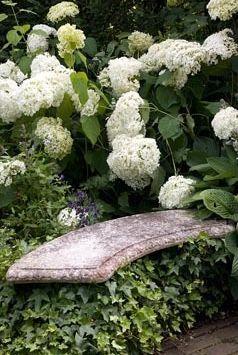 Un banc cache dans les anbelles et les lierres