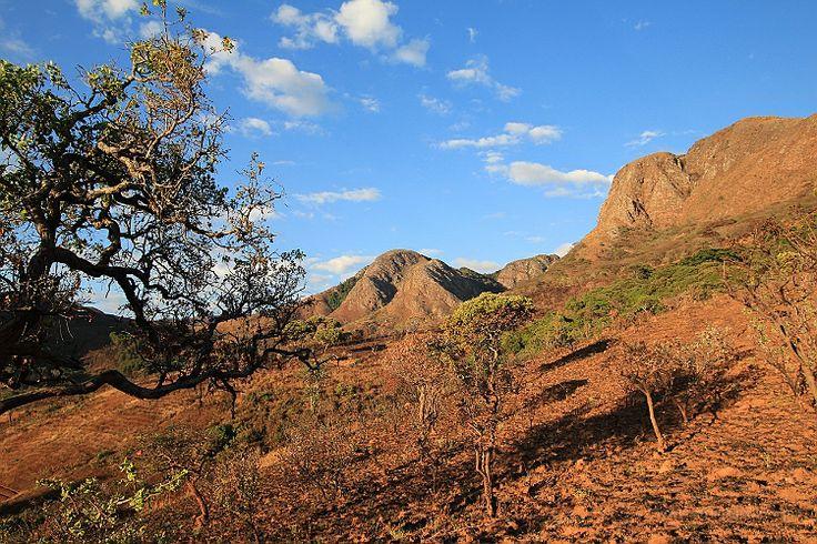 Malawi/Zambia - Mafinga Hills || http://www.szczytyafryki.pl || #Malawi #Zambia #Mafinga #Afryka