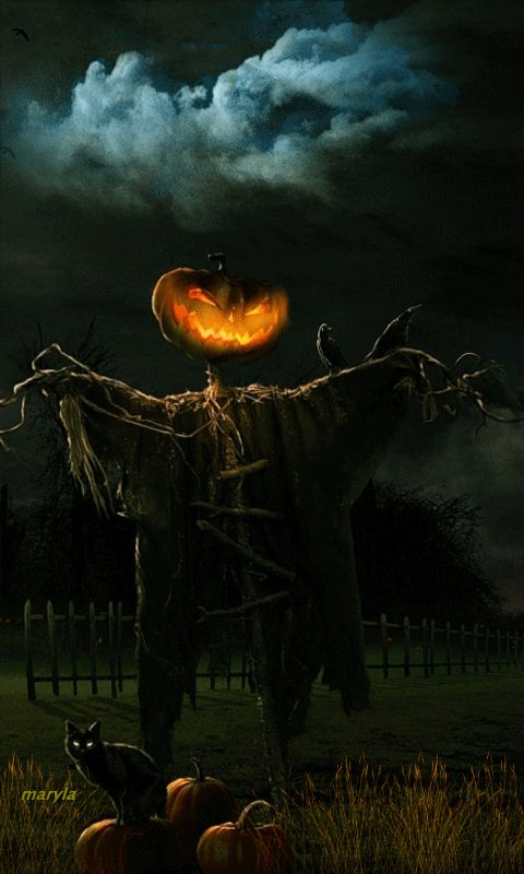 708 best Halloween Facebook Covers and pictures images on ...