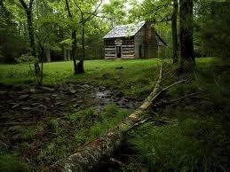 Carter Shields Cabin in #Cades #Cove