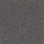 Carpet Sample - San Rafael II (S) - Color Aspen Summit Texture 8 in. x 8 in.