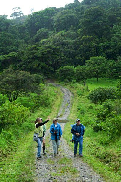 Unique Volunteer Trips   Ecotourism   Adventure Travel Experiences