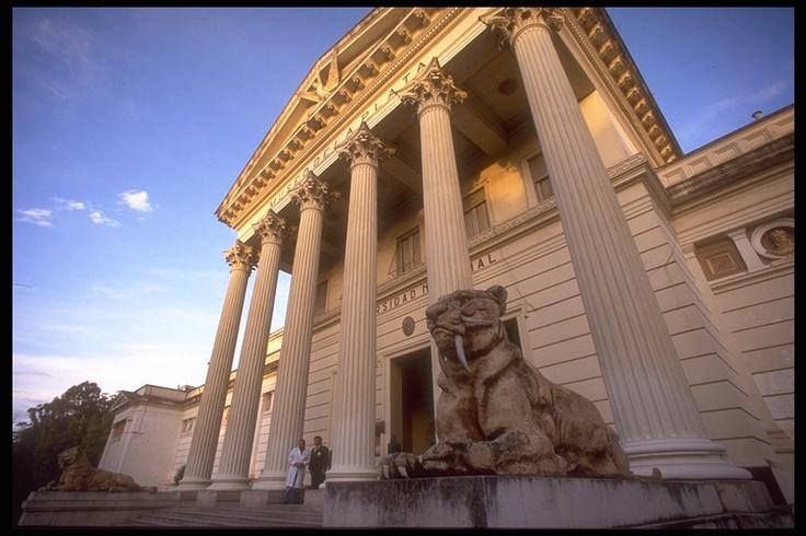 Museo de Ciencias Naturales . La Plata