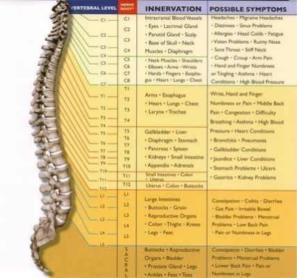 Spinal Cord Injury Levels And