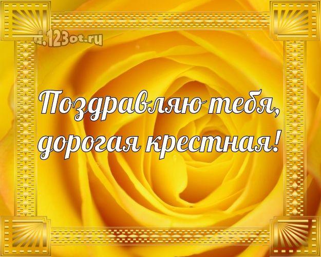 Благодарностью спасибо, открытка с днем рождения с розами крестной