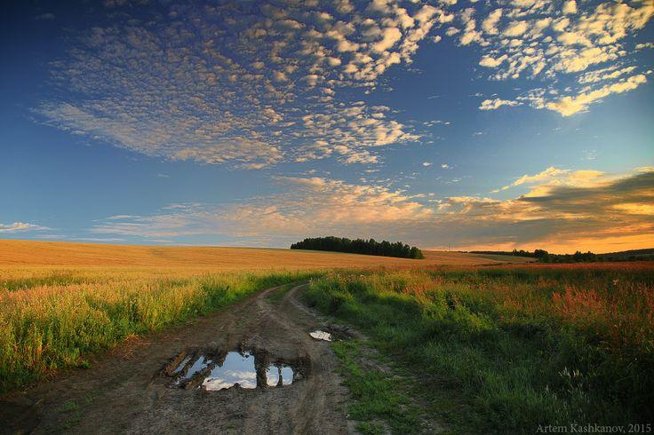 По проселочной дороге... - Красивые летние фотографии