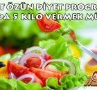 1 Haftada 5 kilo verdiren Mehmet Öz'ün harika diyet programı ! Diyet listesini almak için tıklayınız.