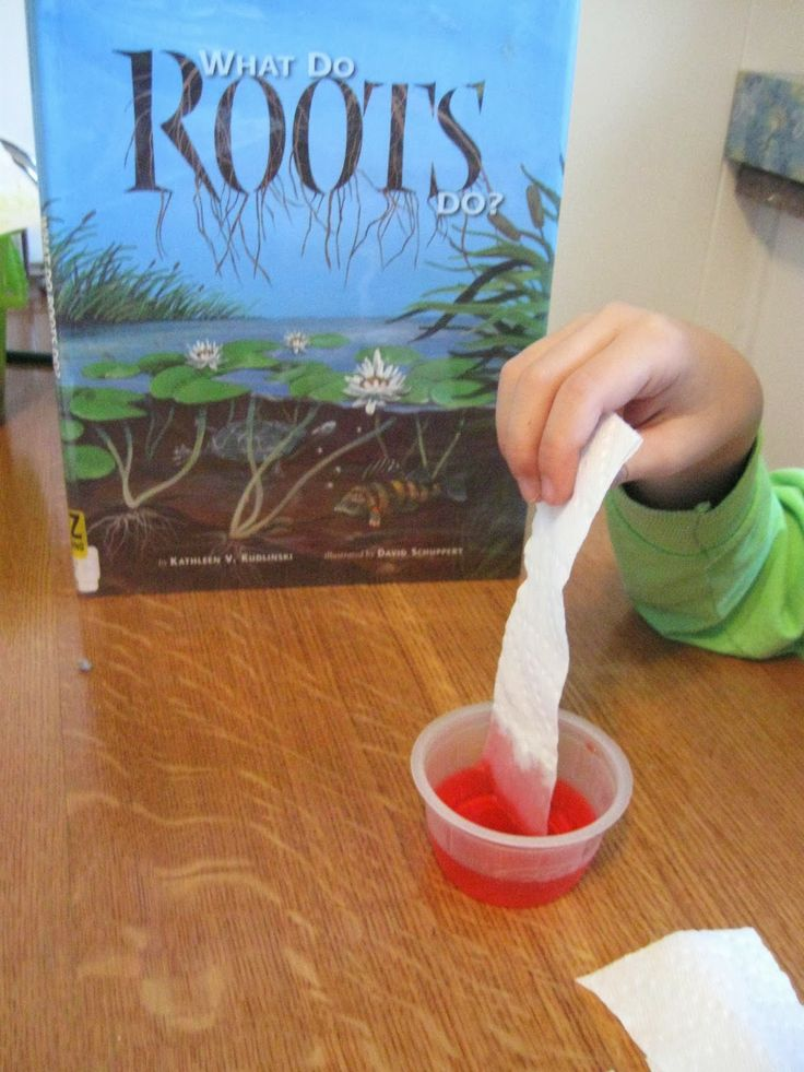 Tree Roots~1st Grade Lesson with art and printable