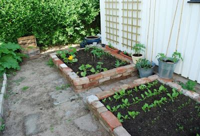 Old bricks reused for planting boxes