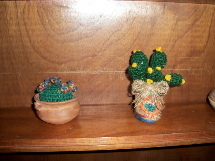 Algunos cactus chicos, damos plena garantía que no crecerán