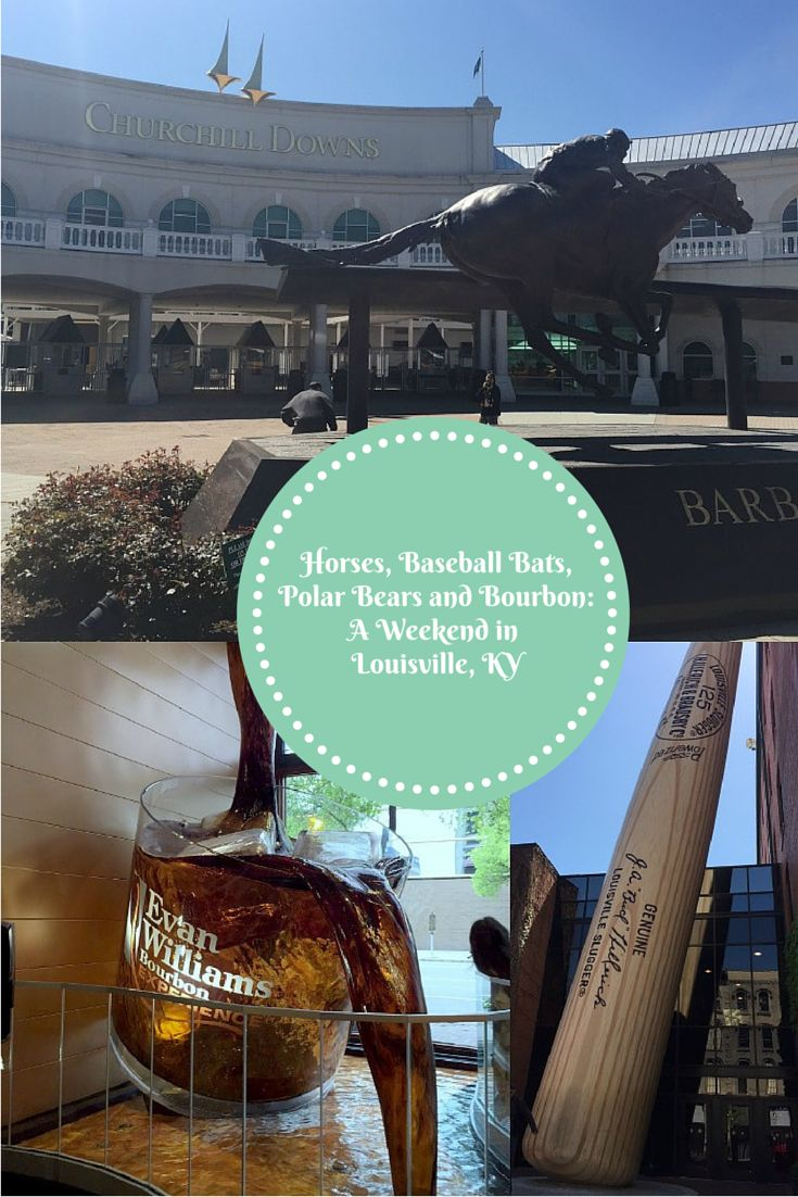 I had a fabulous weekend in Louisville, KY last weekend. Check out my recap of Churchill Downs, The Louisville Slugger Bat Museum, Louisville Zoo and a bourbon tour.
