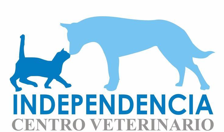 INICIO | Centro Veterinario Independencia