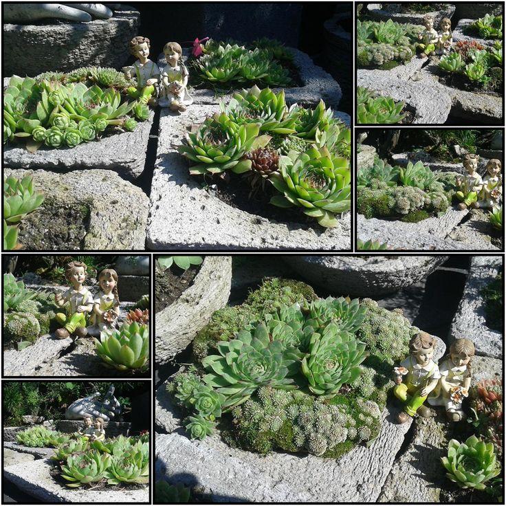 Rojniki Donice do ogrodu -patio-taras-balkon