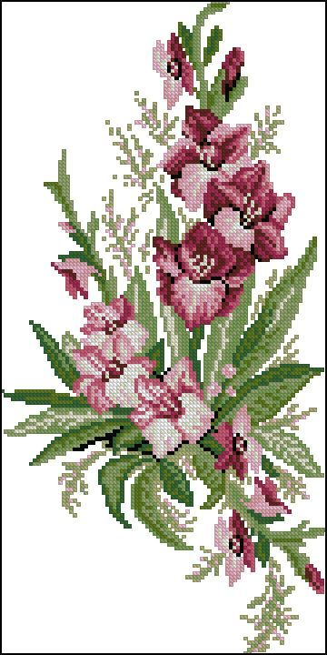 Cross stitch - flowers: Gladiolus (free pattern - chart)