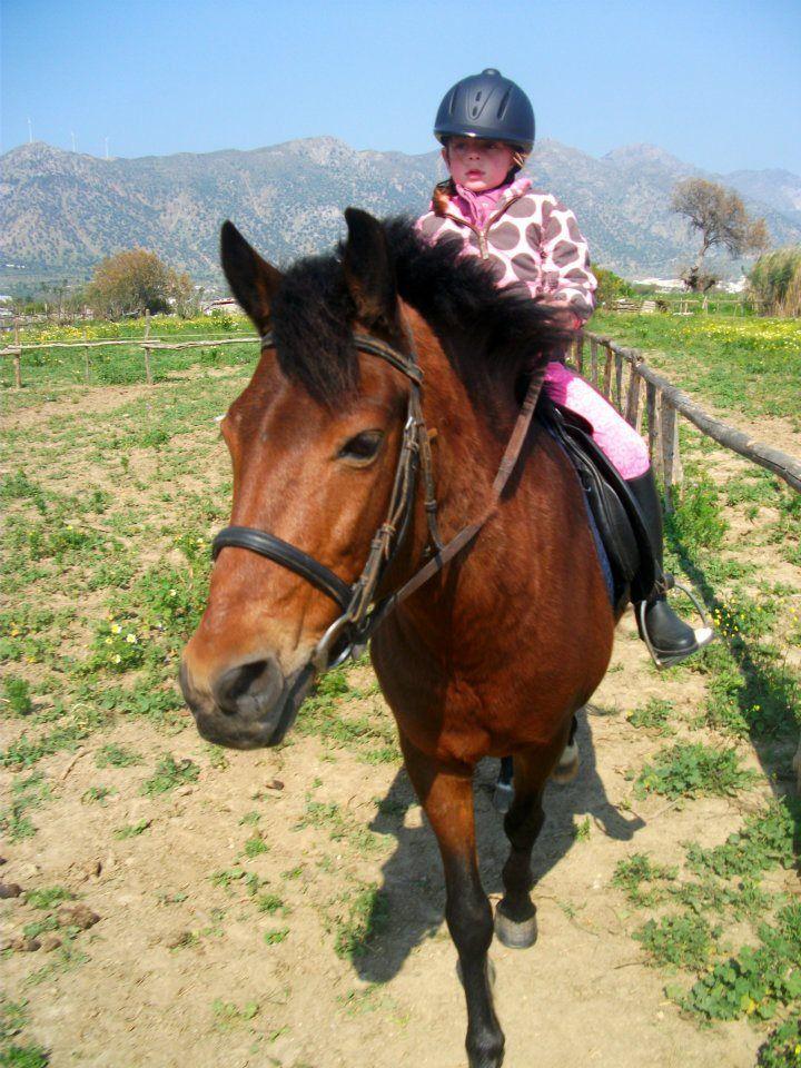Rafaels Horse Riding Centre – Kardamena | KosExplorer.com -