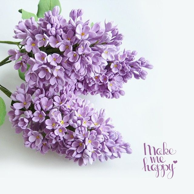 Make Me Happy  +992500000426 (viber/telegram)  Доставка цветов по Душанбе  Flowers delivery. Dushanbe