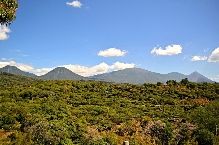 Santa Ana Volcano, Izalco & the Coatepeque Caldera from the Ruta de Las Flores | El Salvador